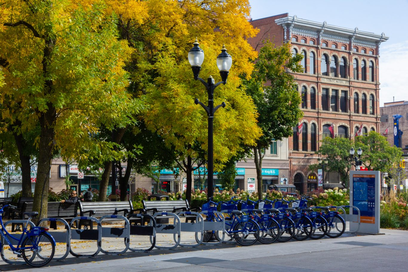 A city street with bicycle racks, trees, and buildings in the background